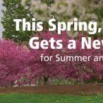 Coming This Spring: Moodle Has A New Home for Summer and Fall Courses